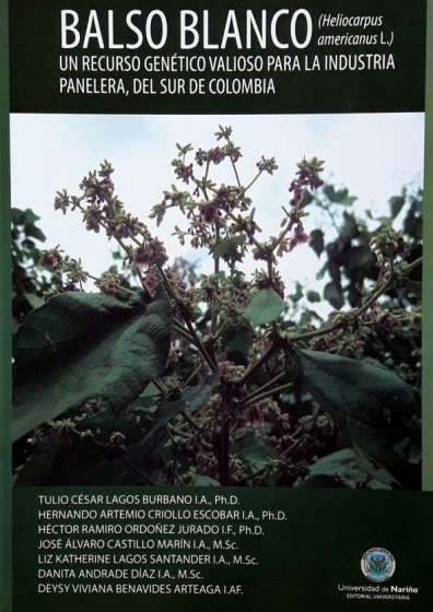 Balso blanco (Heliocarpus amiricanus L.)
